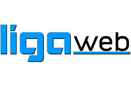 Liga Web S.A.